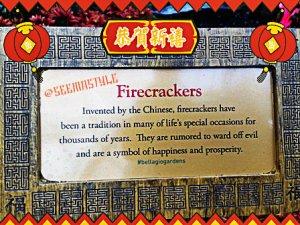 Seema_Style_Firecracker_Bellagio